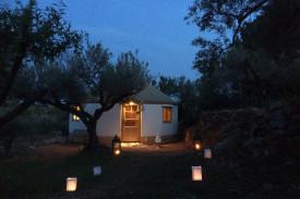 Mongol Yurt in a Mediterranean Forest